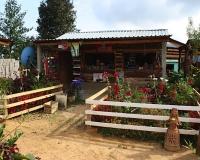 oaxaca_city_farm